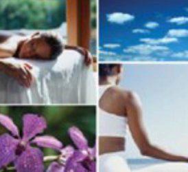 Zoneterapi, Nada og Bach Blomsterremedier